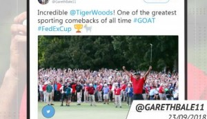 Socialeyesed - Tiger roars to victory