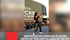 Watch South African Players Enjoy At The Fan Village In The Wc