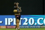 IPL 2019: I should have batted at No 4, says Andre Russell after KKR's 10-run loss to RCB