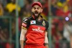 Virat Kohli to continue as Royal Challengers Bangalore captain: Mike Hesson