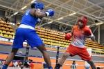 Boxam International: Pooja Rani defeats World Champion as nine Indian Boxers storm into the finals