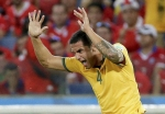 Cahill in awe of Postecoglou