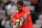 Del Potro to miss US Open after knee surgery