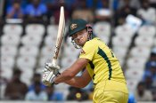 India vs Australia: Stoinis is playing five times better than a year ago: Ponting