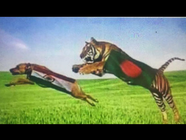 Bangladesh Fan Insults Tricolour Ahead Of India Bangladesh Semi Final Champions Trophy
