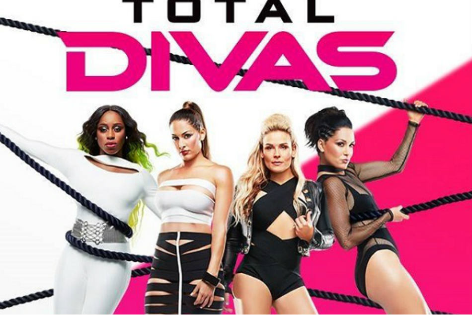 Storyline and casting details of upcoming season of wwe - The diva series ...