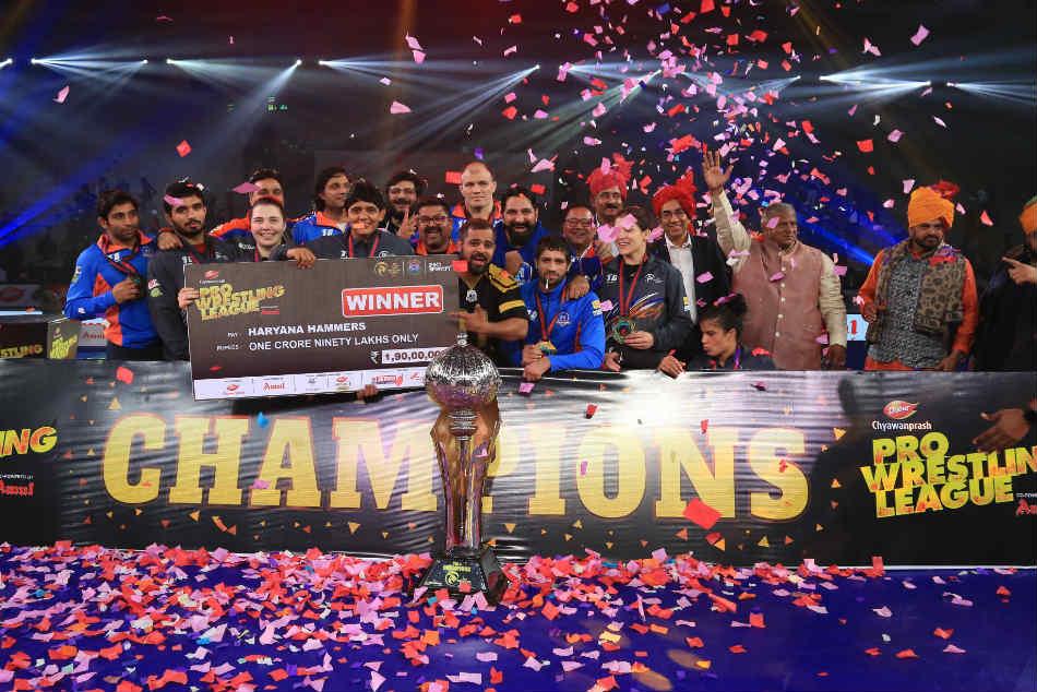 Haryana Hammers Punjab Win Pwl 4 Title