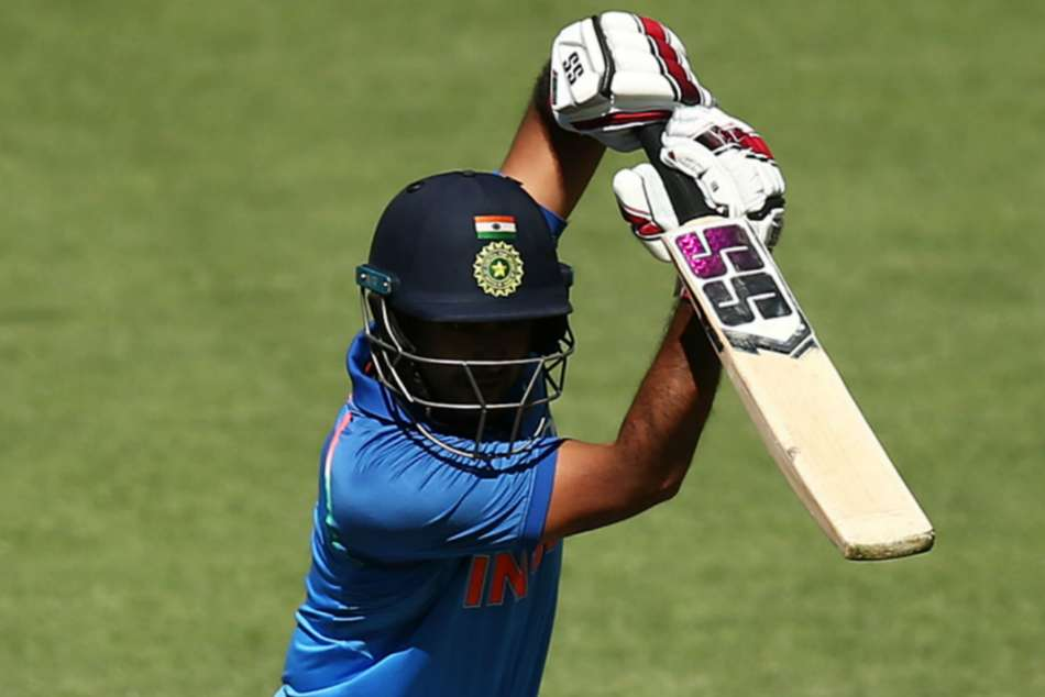 India Vs New Zealand 5th Odi Rayudu Leads India S Clinical Win