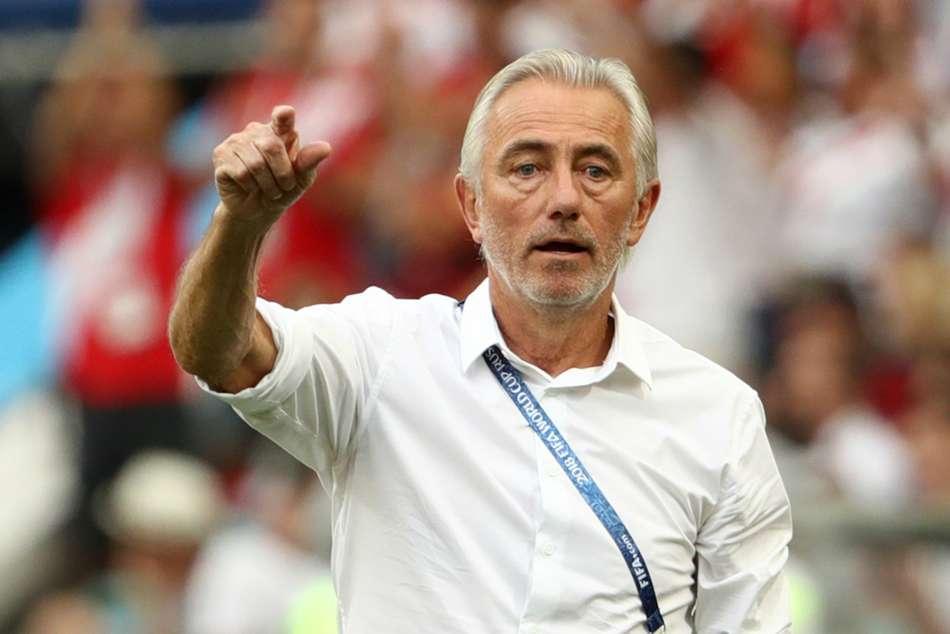 Bert Van Marwijk Appointed Uae Head Coach