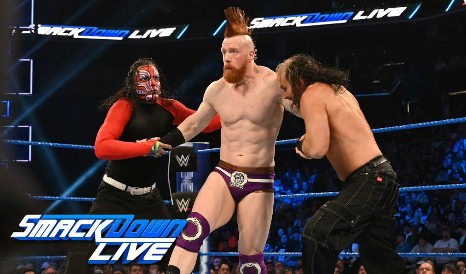 Spoiler On Dream Wwe Wrestlemania Match Hardy Boyz
