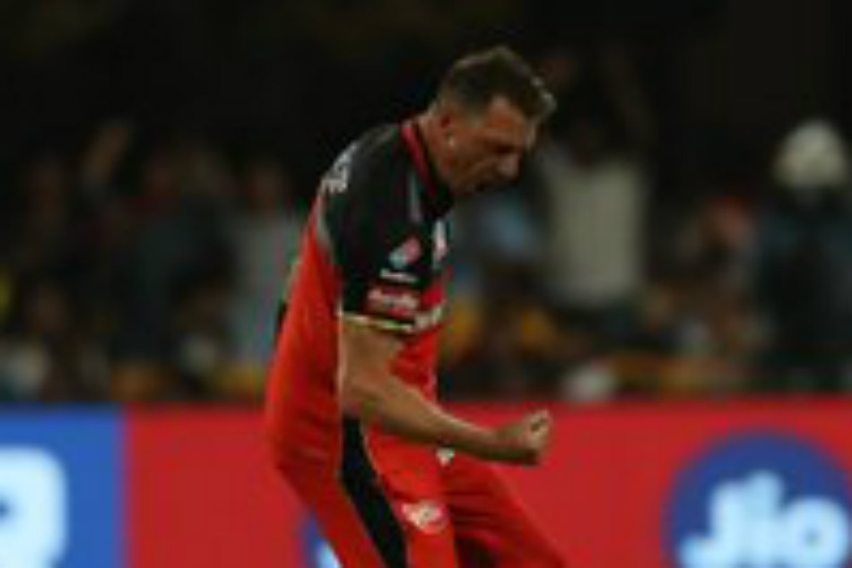 Dale Steyn Ruled Out Of Ipl