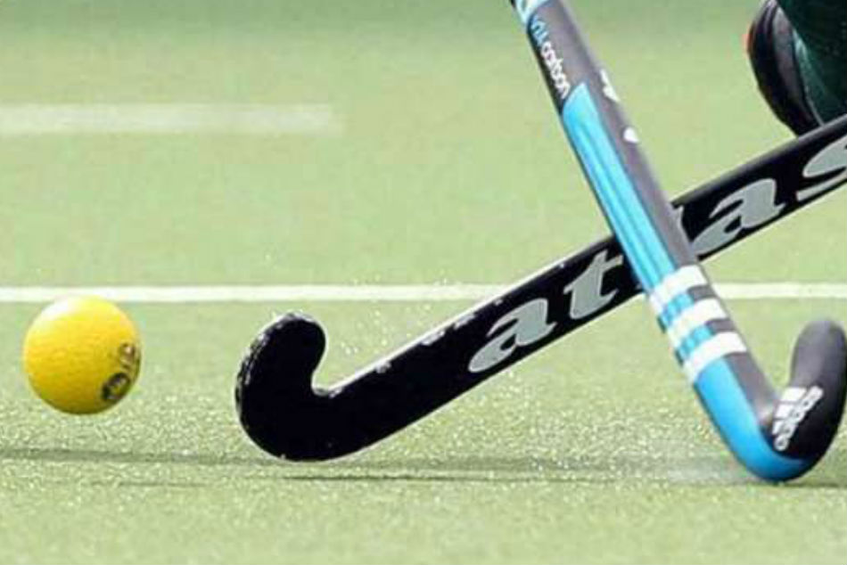 Watch Fight Breaks Out Between Punjab Police And Pnb During Nehru Hockey Final