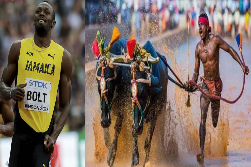 Faster than Usain Bolt? Kambala racer Srinivas Gowda covers 100 metres in just 9.55 seconds