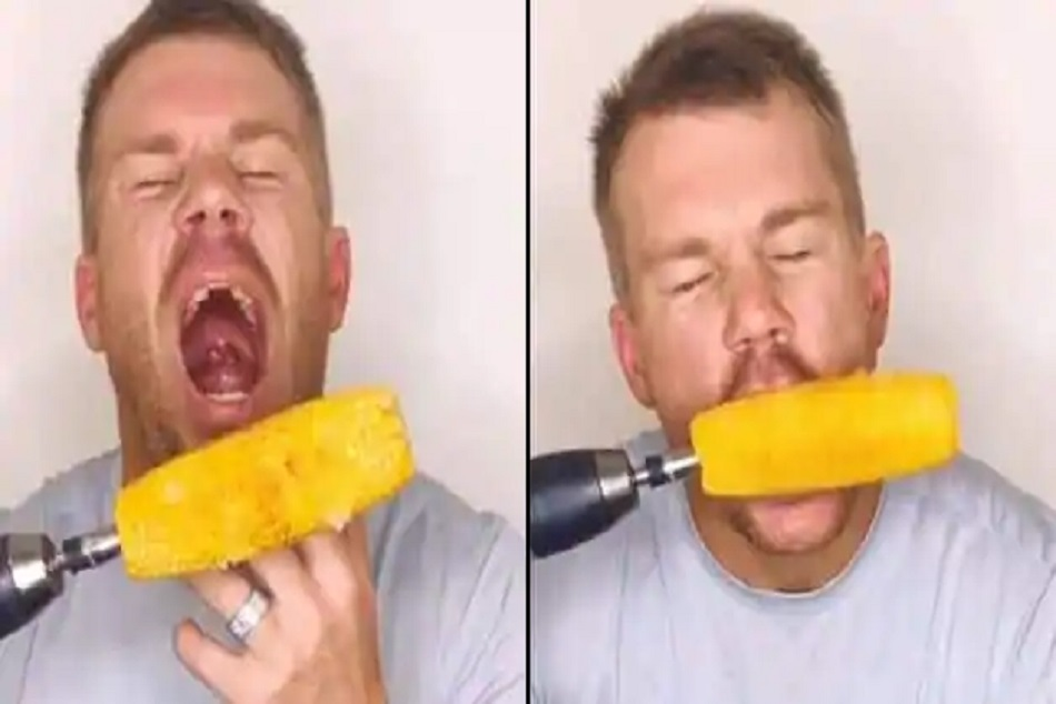 Stunt gone wrong: David Warner hurts his tooth while attempting a life hack, posts hilarious video on Instagram