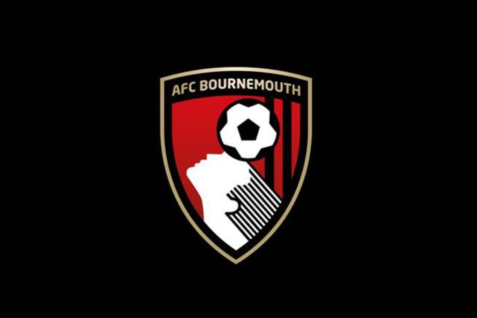 Three Players Who Should Be Targeted By Big Clubs If Bournemouth Get Relegated