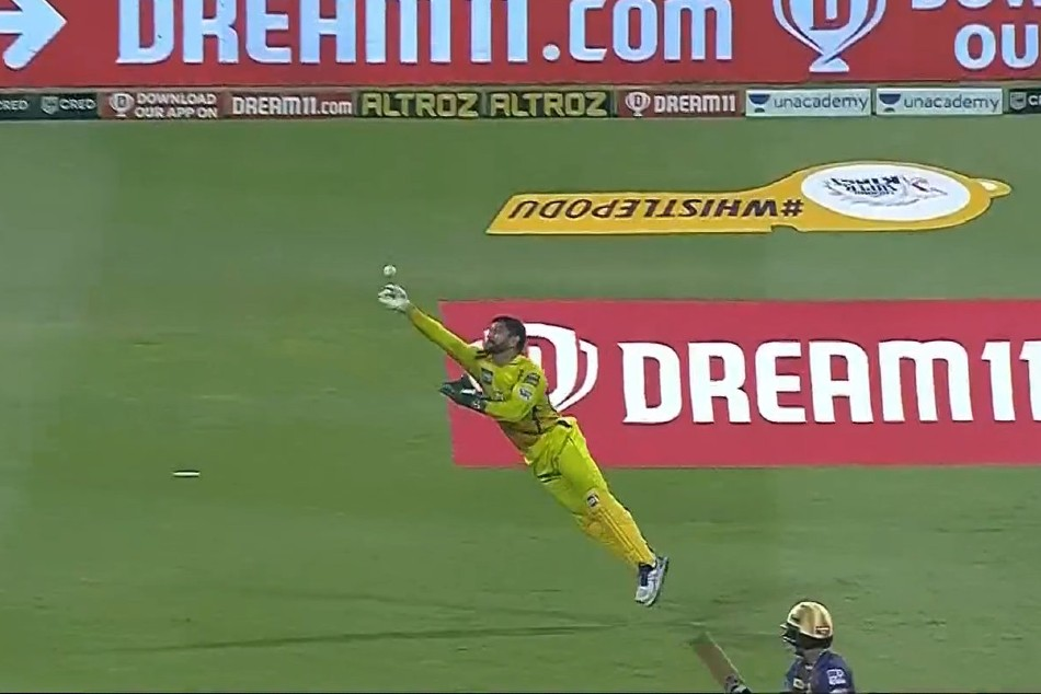 IPL 2020: Flying MS Dhoni impresses together with his wicketkeeping abilities in opposition to KKR; takes 4 catches, results a run out