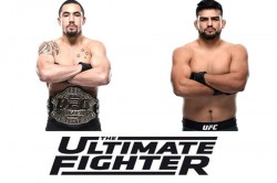 Ufc Whittaker Gastelum Coach The Ultimate Fighters Heavy Hitters