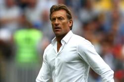 Herve Renard Saudi Arabia Head Coach