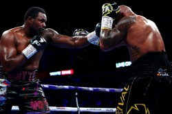 Wbc British Boxing Board Bbbofc Dillian Whyte Release Details Drugs Test Doping Ukad Vada