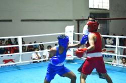Haryana Picks 7 Gold At 3rd Junior Women S National Boxing Championships