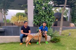 Rishabh Pant Shares Good Vibes Only With Ms Dhoni And His Pet Dog