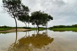Mayakoba Golf Classic Start Friday Heavy Rain