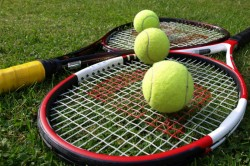 Pakistan Challenge Itf Decision To Shift Davis Cup Tie Against India