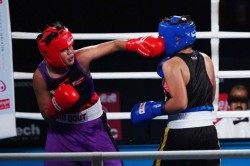 Big Bout Indian Boxing League Timur Helps Ne Rhinos Steal Panthers Thunder