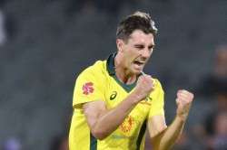 Ipl 2020 Will Be A Great Event Even If Played Without Crowd Pat Cummins