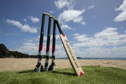 Icc Recommends Gloves For Umpires Social Distancing For Players For Post Covid19 Era