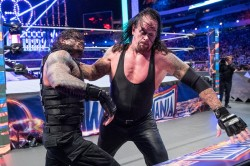 The Undertaker Says He Will Never Ever Retire From Wwe