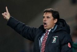 Wales manager Coleman quits