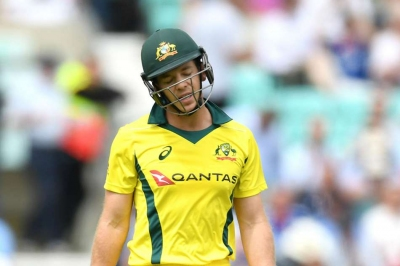 Paine blames Australia's batsmen