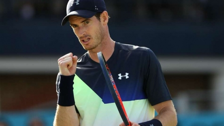 Murray accepts Eastbourne wildcard