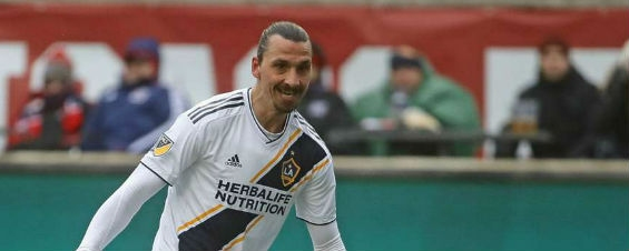 Ibrahimovic not in Sweden's plans